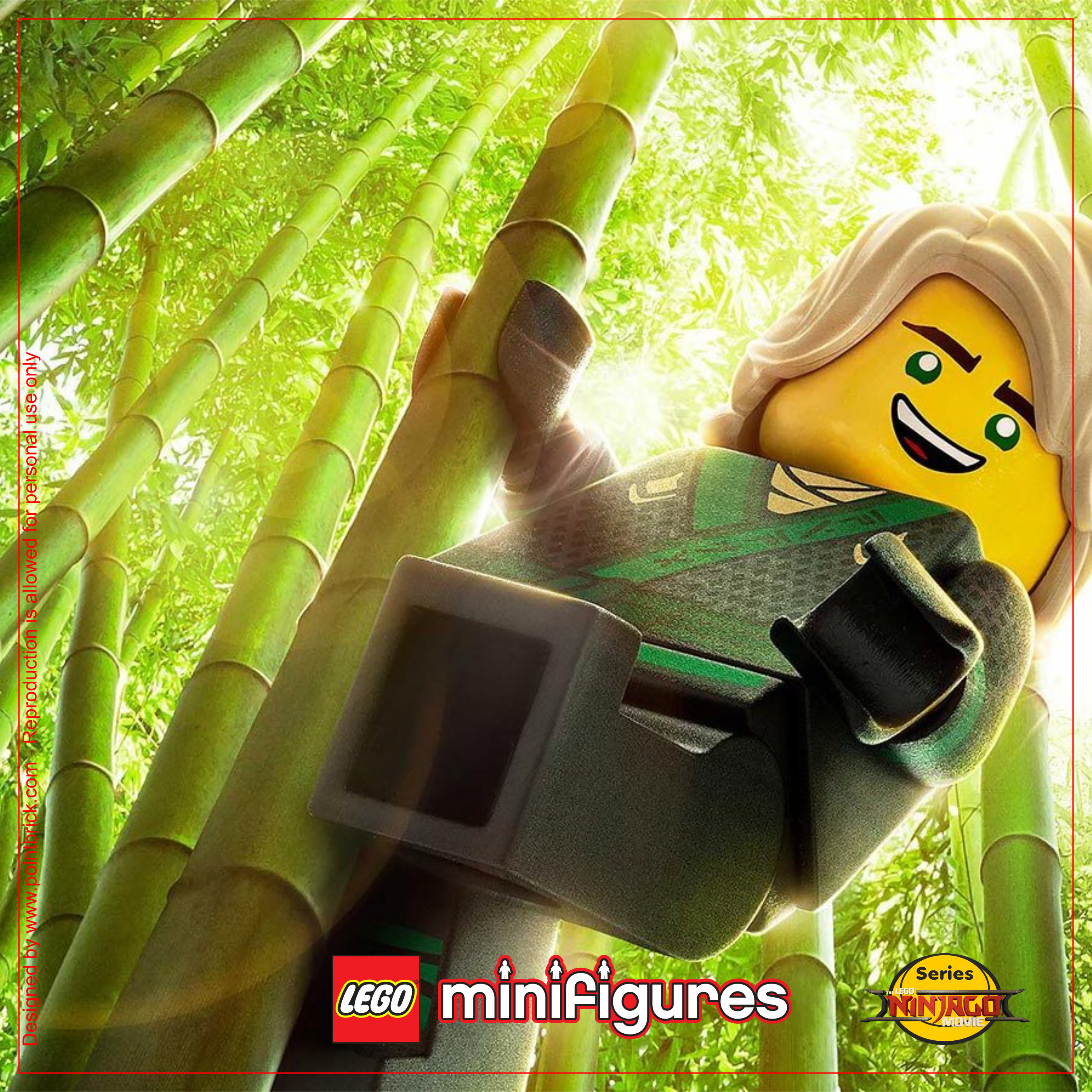 LEGO Minifigures 71019 The LEGO Ninjago Movie Lloyd - Display Frame Background 230mm plain - Clicca sull'immagine per scaricarla gratuitamente!