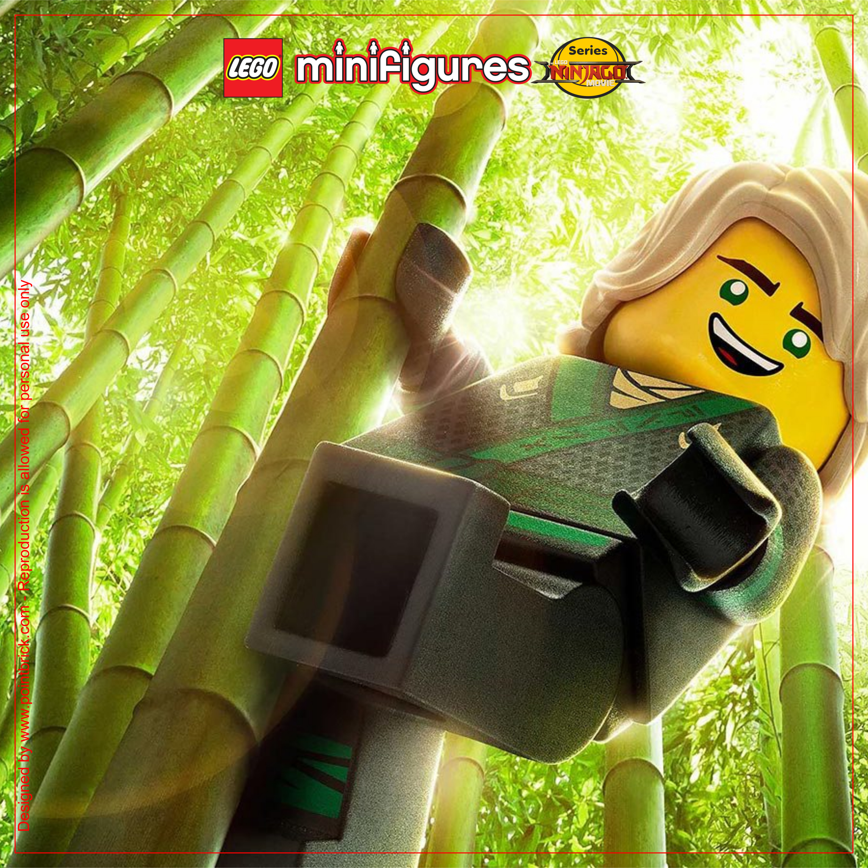 LEGO Minifigures 71019 The LEGO Ninjago Movie Lloyd - Display Frame Background 230mm Plexiglass - Clicca sull'immagine per scaricarla gratuitamente!